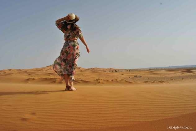 Dune del Sahara