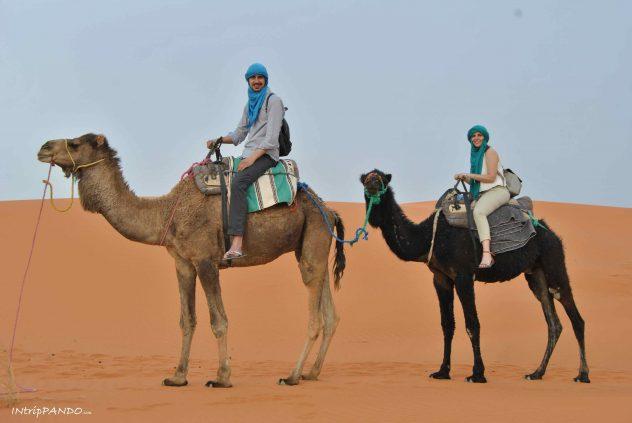 Escursione su cammello nel deserto