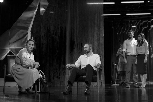 Crítica à peça Elizabeth Costello,encenada por Cristina Carvalhal e apresentada no Teatro Nacional S. João a 26 de Janeiro de 2018.