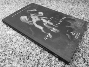 Recensão crítica do livro O Escuro Que Te Ilumina, escrito por José Riço Direitinho e publicado pela editora Quetzal em 2018 | INTRO
