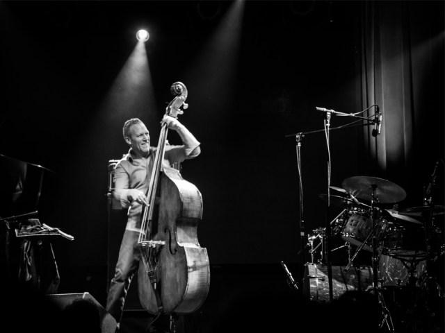 Avishai Cohen – Casa da Música, 20/11/2018