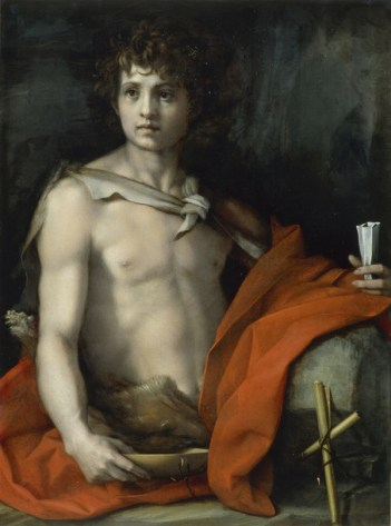 Figure 22 - Andrea del Sarto, Saint John the Baptist, 1523.