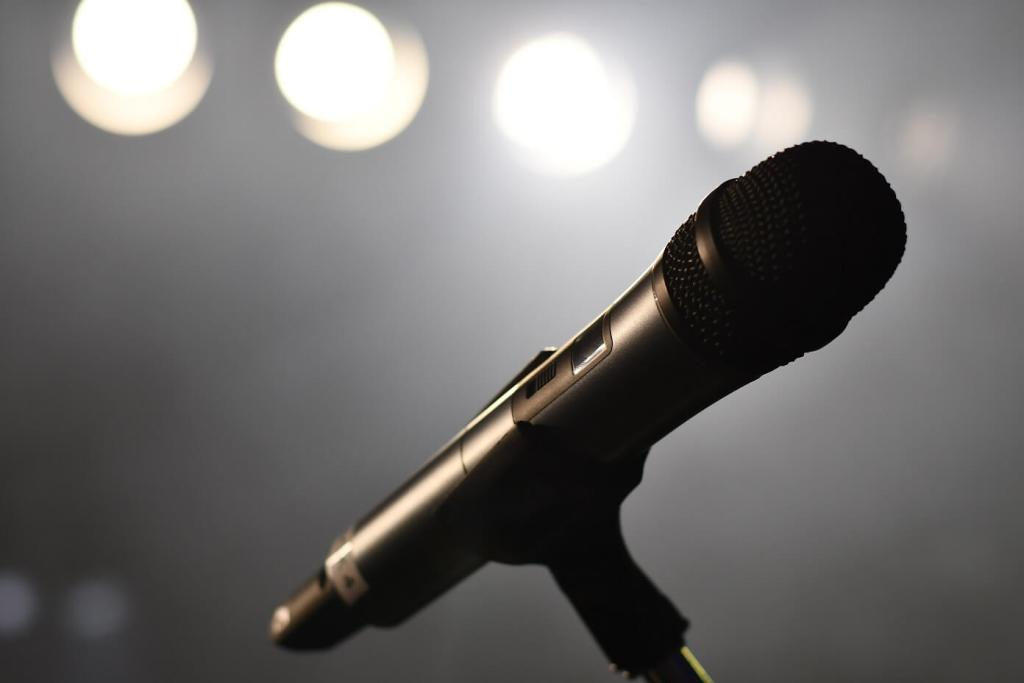 microfoon - introvertel