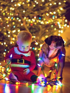 baby-boy-christmas-christmas-lights-cute-Favim.com-1646131