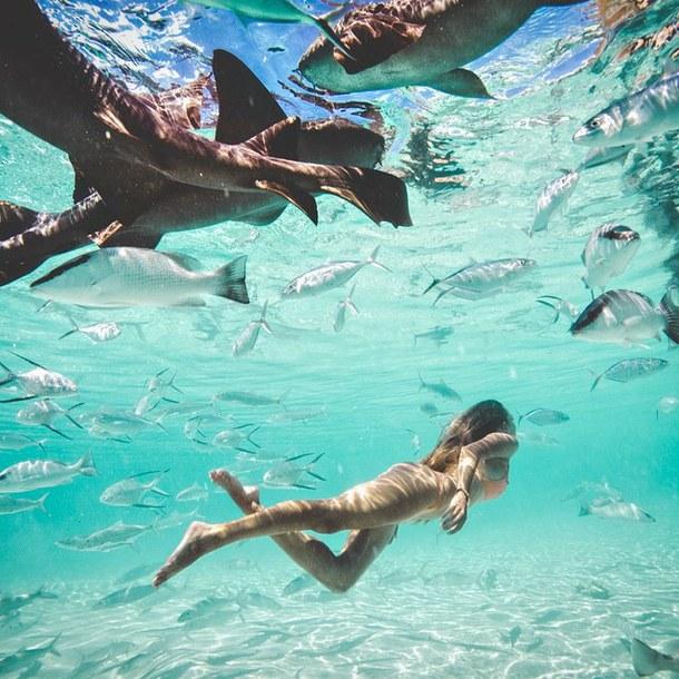 beach-beautiful-beauty-bikini-228216