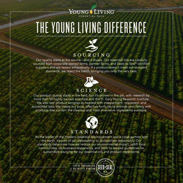 Seed-to-Seal-The-YL-Difference_Shareable-Micrographic-Facebook_US