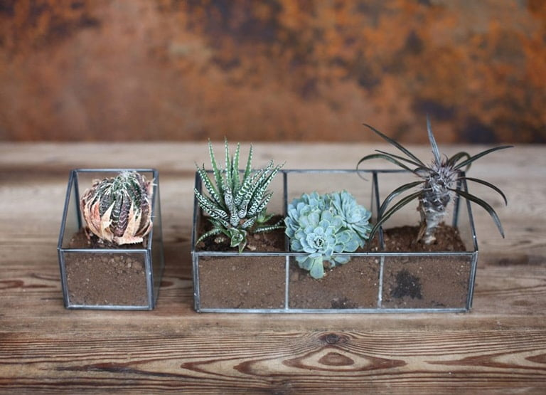 Zinc Glass Planters | In Two Homes