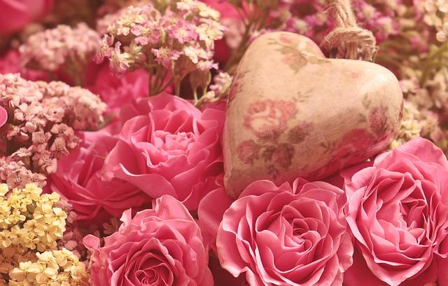 ピンクのバラ(感謝の気持ち)