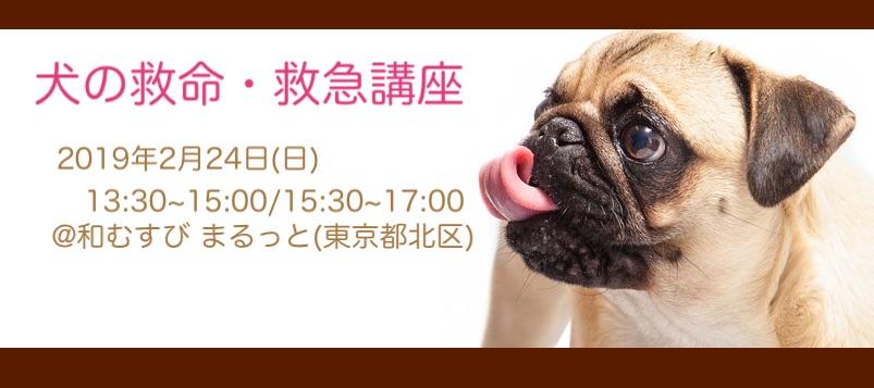 犬の救命・救急講座