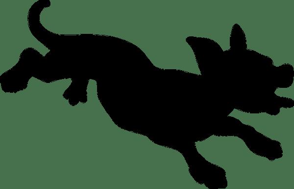 犬の諺 黒犬に噛まれて灰汁の垂れ滓に怖じる(くろいぬにかまれてあくのたれかすにおじる)