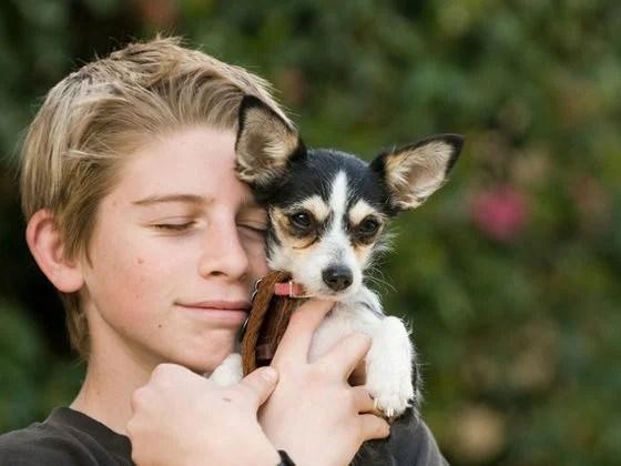 犬や猫を10分モフるだけでストレスホルモンが大幅減少、ようやく科学が証明
