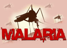 New Anti-Malaria Vaccine Reduces Risk Of Infection By Over 70 Percent
