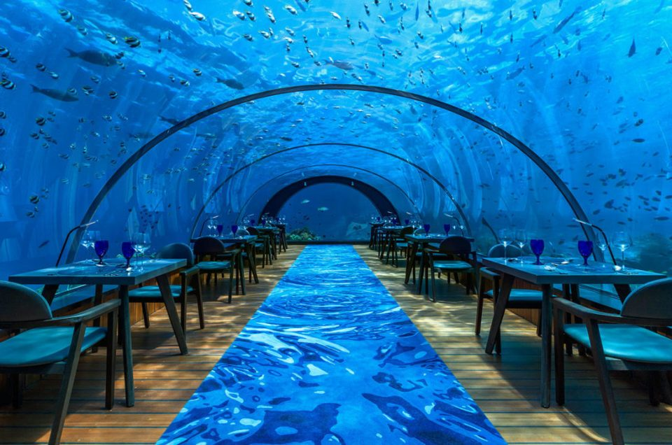 Experience Fine Dining From The Sea You Can See