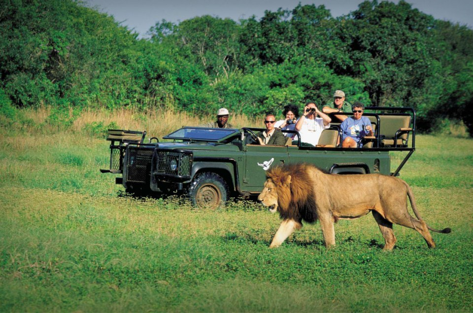 Tourism Is Africa's New Gold – Cyril Ramaphosa