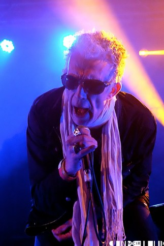 Alabama 3 Unplugged 2 - Loopallu 2014 Day 2 - Pictures