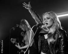 100 Fables at XpoNorth 2018 25 - 100 Fables, XpoNorth, 2018 - Images