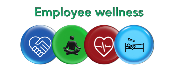 Employee Wellness programmes