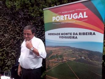 Wines Of Portugal By Cap-8