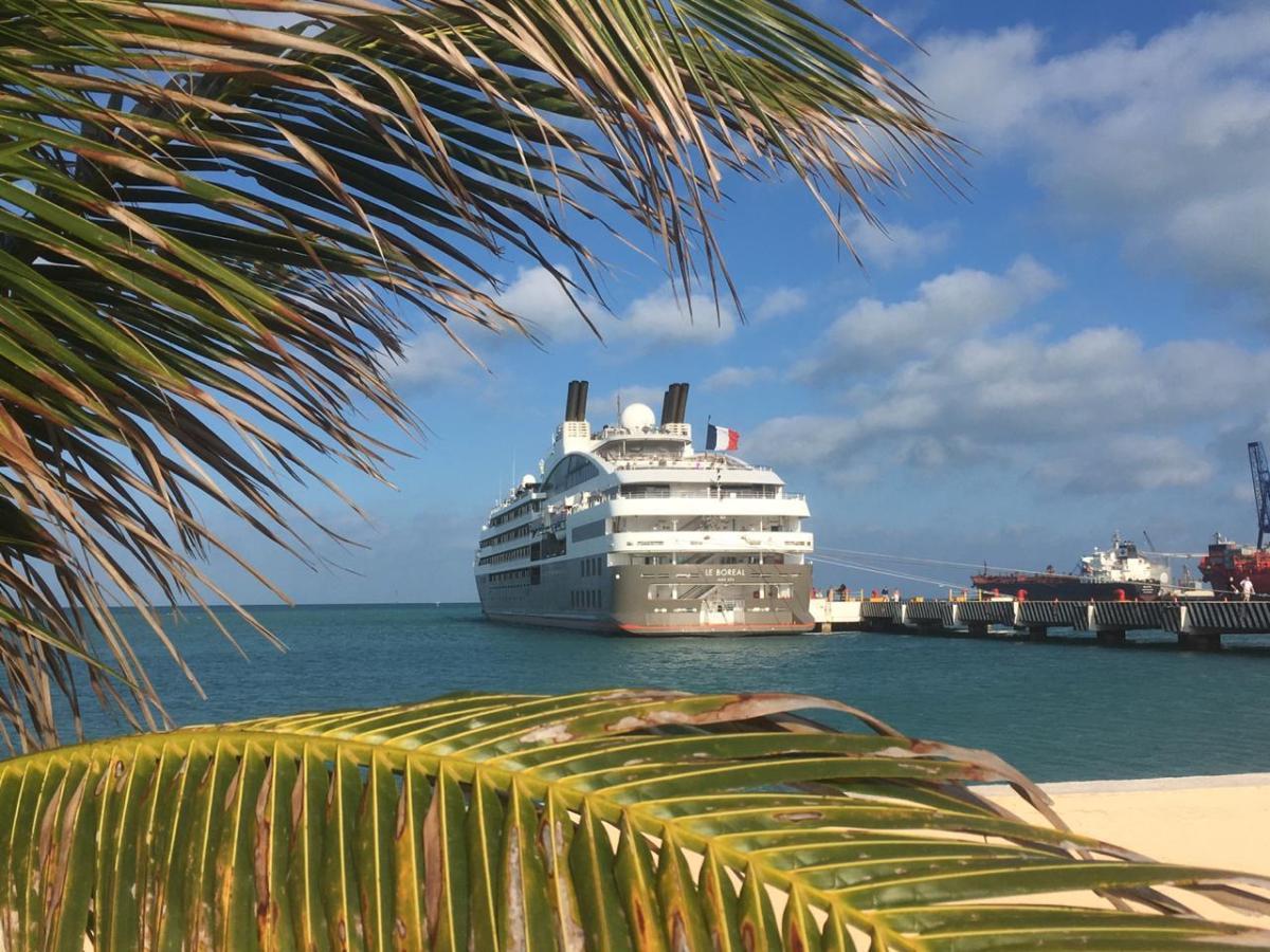 "Arriba crucero ""Le Boreal"" de la naviera francesa Ponant a Yucatán"
