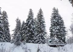 Visit The USA presenta lugares para disfrutar del esquí en EU