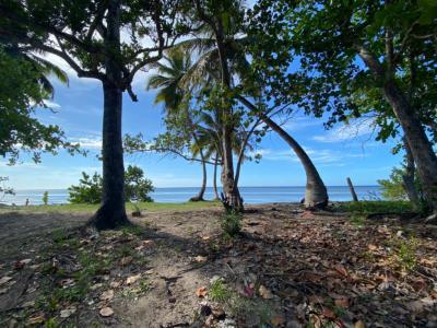 Extensión de Terreno con 300,000 Mts2 frente a la Playa