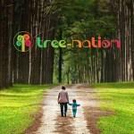 Baelo plantará tantos árboles como sean necesarios para compensar el CO2 generado