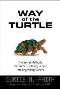 Camino de la tortuga