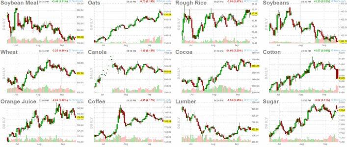 21-septiembre-commodities-2% - No vemos que se haya ido dinero a las Commodities