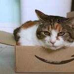 Amazonの配送時間指定を実質無料に出来る便利な裏ワザ