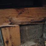 シロアリ被害!第01号物件で白蟻防除工事