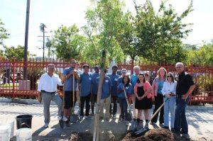 HBT Tree Planting