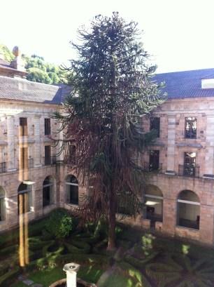 Vista desde el piso superior del patio noble