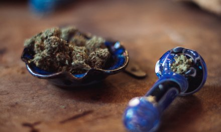 Irish start-up secures €500k funding to explore medical benefits of cannabis