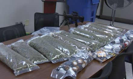 Ten pounds of marijuana worth $200K seized in Port Wentworth bust