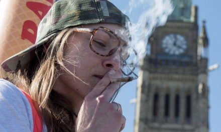 8 burning questions about the coming federal pot report – CBC.ca