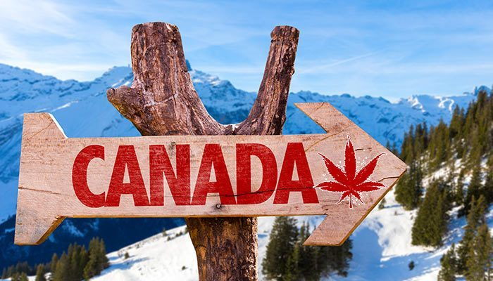 Order Weed Online in Canada is a bargain!