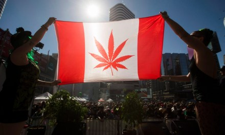 Liberals want to move up pot legalization to avoid Canada Day anniversary – CBC.ca