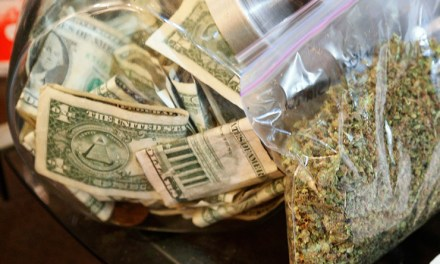 Colorado weed sales top $100mn for 12th consecutive month