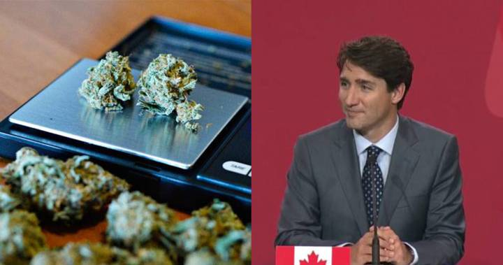 Justin Trudeau outlines proposed excise tax on legalized marijuana – Globalnews.ca
