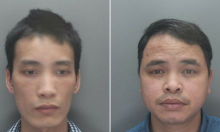 Vietnamese men homeless after moving to UK agreed to run £500k cannabis farm