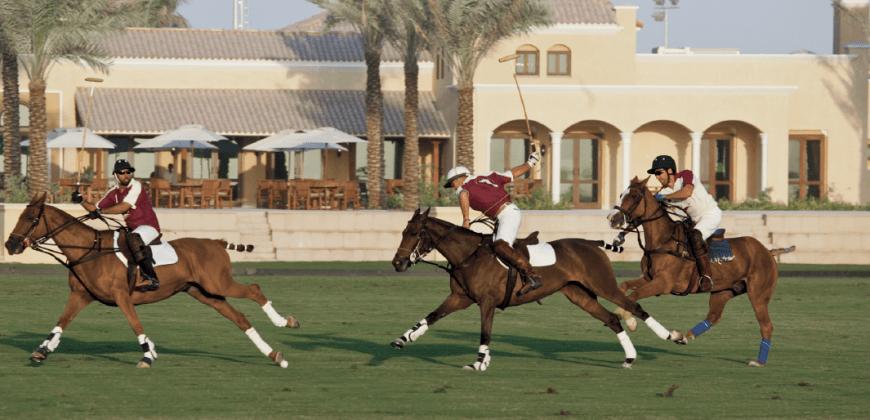 Camelia at Arabian Ranches 2