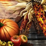 Investing or Gambling #153 ~ Happy Thanksgiving!