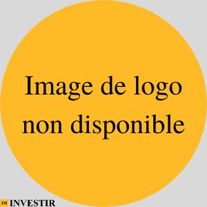 Logo non disponible-Investir Mali