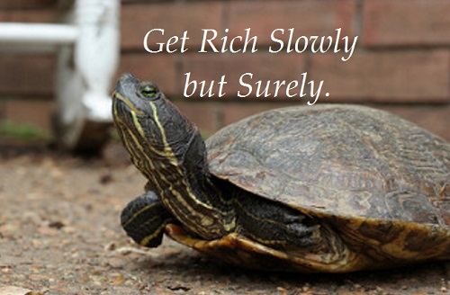 Avoid Get Rich Quick Schemes and Try to Get Rich Slowly Like Turtle