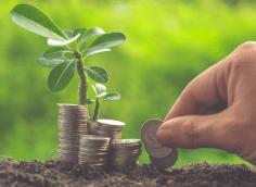 Куда инвестировать небольшие деньги в России