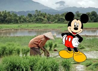 Sorry, no Disneyland in Laos