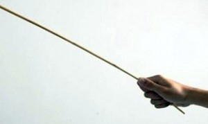 Caning stick