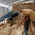 Thai government earmarks $3.6 billion for rice support scheme