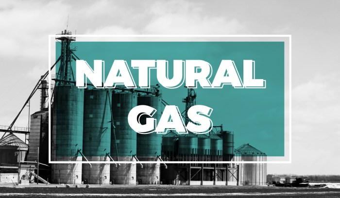 Natural Gas – Flipping the Switch
