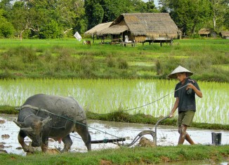 Laos seen on track to become upper-middle-income country by 2030